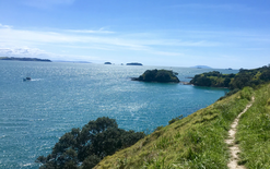 Waiheke Island to be electrified