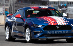McLaughlin Mustang going under hammer